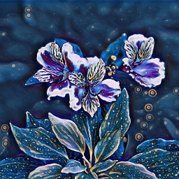 freetoedit midnight azaeleas floral flora