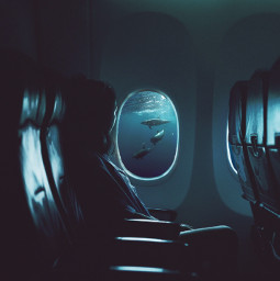 madewithpicsart interesting art whales remixed FreeToEdit blue fx girl airplane surreal fx
