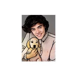 harrystyles puppy labrador art picture