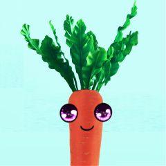 carrot freetoedit