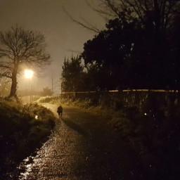 teo night rain nightwalk freetoedit