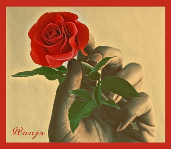 freetoedit myedit rose hand red