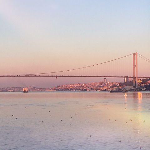 sunrise freetoedit