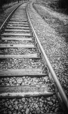 FreeToEdit blackandwhite railroad