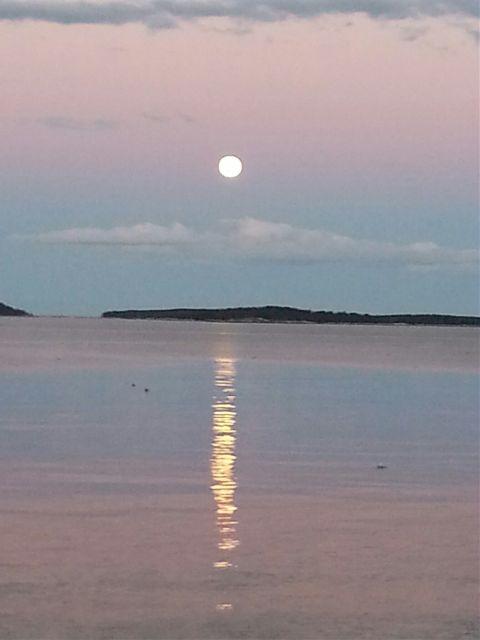#freetoedit,#moonrise