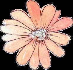 little flower orange tumblr freetoedit