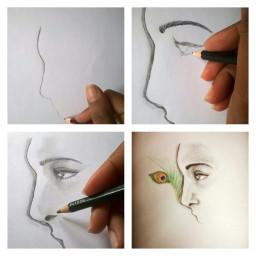 hand sketch drawing pencil illustration