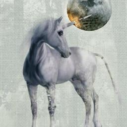 freetoedit unicornremix myedit moon fantasy