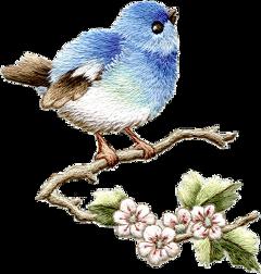 freetoedit fte ftestickers bird flower